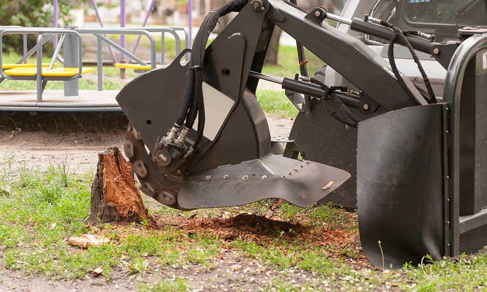 stump grinding denver